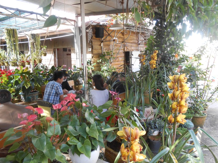 Home cafe bkst