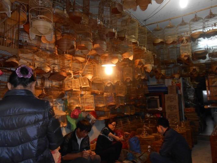 Birdcage shop