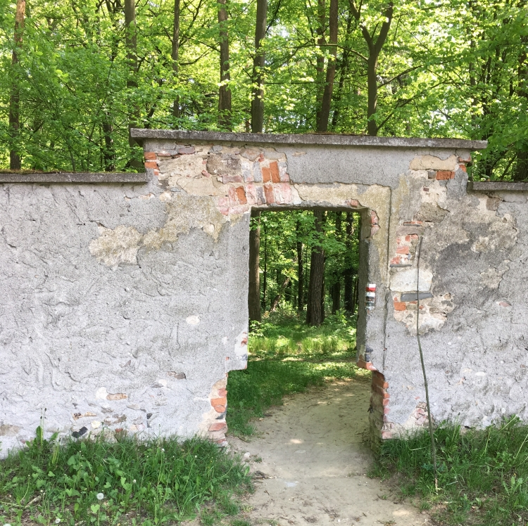 5-forest-gate.jpg