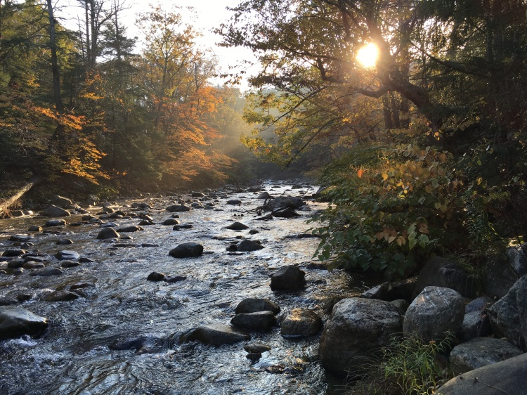River near mill